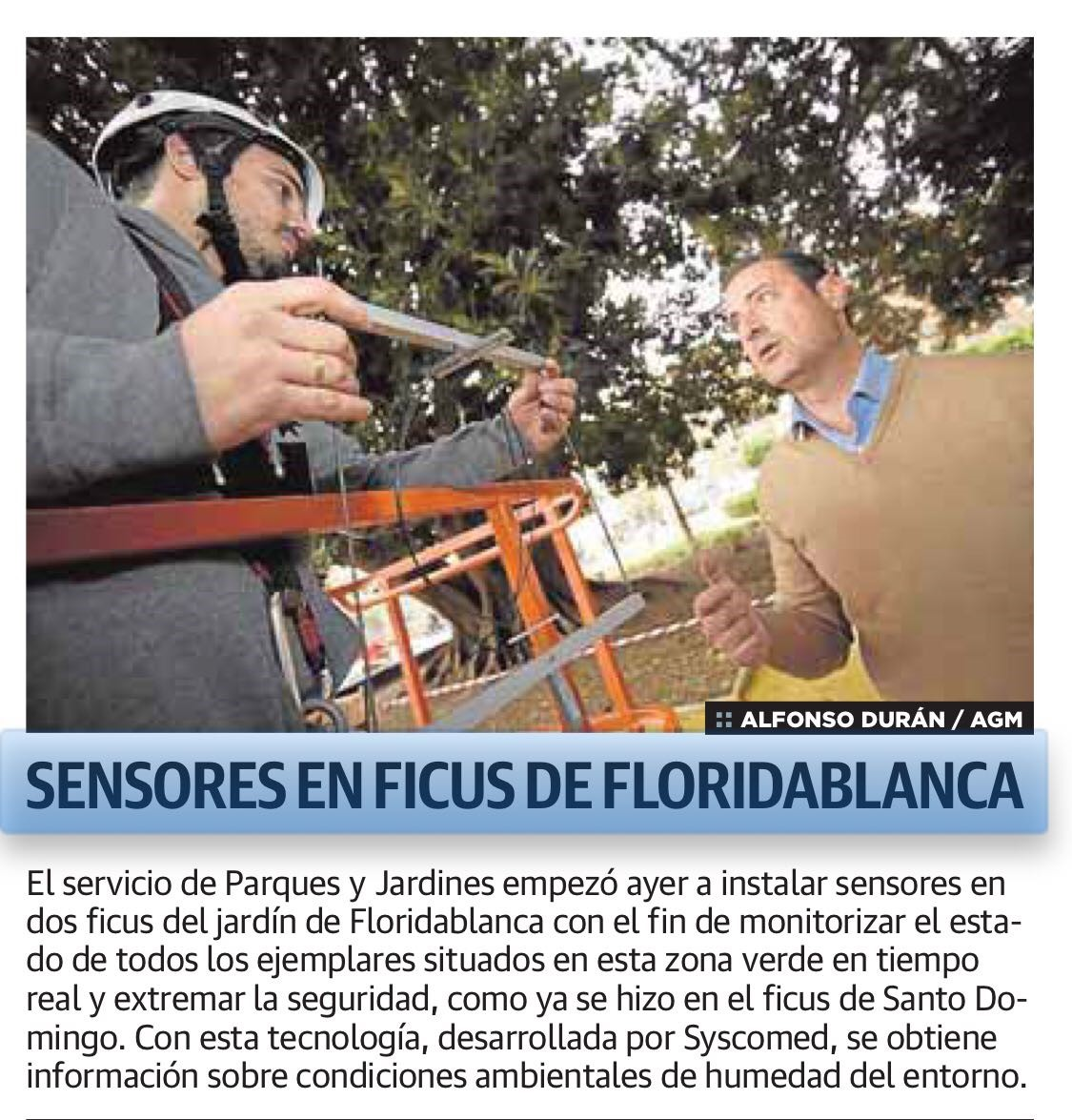 Monitorizacion ficus Murcia Syscomed